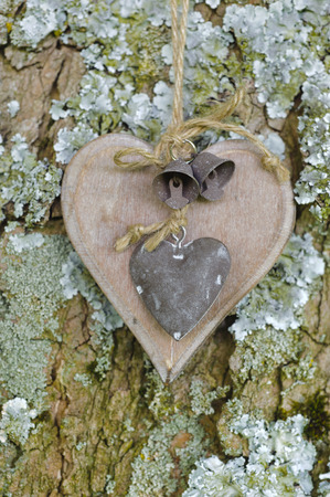 bark carving: carved wooden heart hanging on tree as symbol for love and romance
