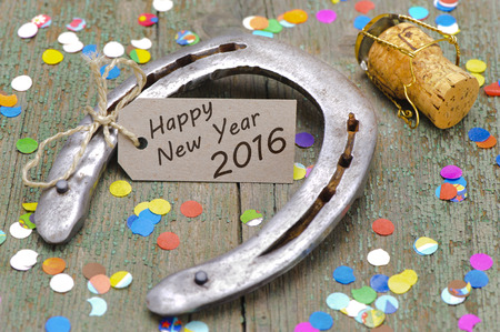 horse shoe: Happy new year 2016 with horse shoe as lucky charm Stock Photo