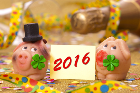 luckiness: Happy new year 2016 with pig as lucky charm Stock Photo