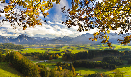 panorama view: panorama landscape in Bavaria with alps mountains, meadows and beech tree at autumn