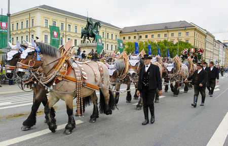 coachman: Munich, Germany -  September 20, 2015:  The Oktoberfest is the world biggest beer festival and at the opening parade with rd. 9000 participants take part in historical costumes, music bands and horses.