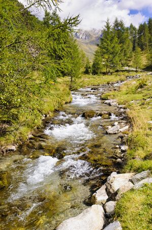 creek: small stream in alps mountains Stock Photo