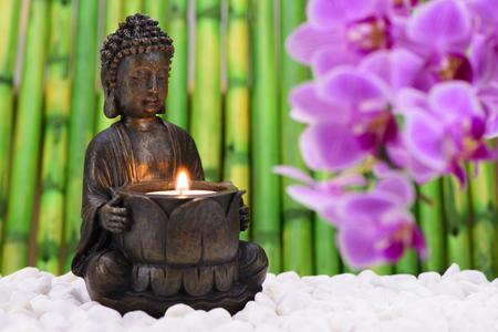 Buddha is sitting in ZEN garden with orchid flower