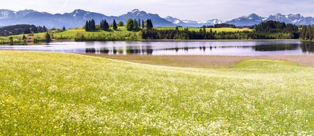 panorama landscape in Bavaria with lake and meadow