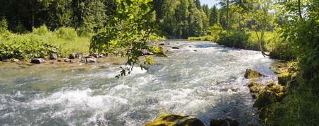 creek: river Ammer in Bavaria Stock Photo