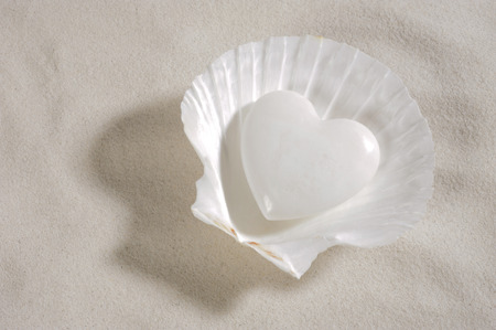 heart in sand: white heart laying in mussel and in white sand as symbol for love
