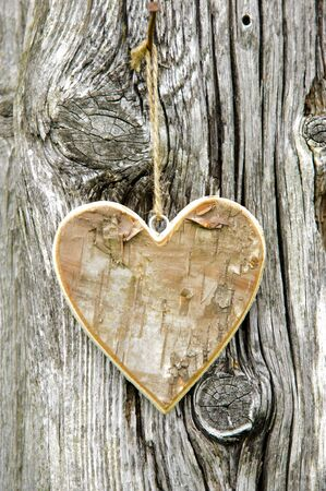 nahaufnahme: Herz am Baumstamm als Zeichen der Liebe