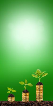 la culture de plantes sur des pièces empilées montre le succès financier