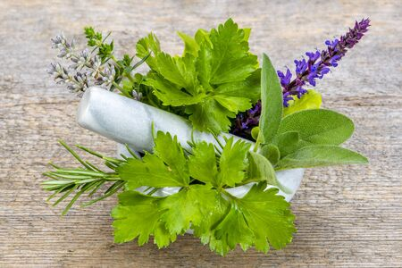 Alternative medicine with medicinal plants