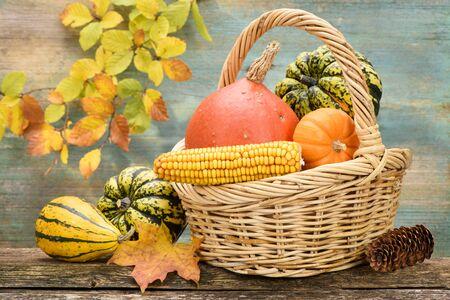 beautiful arrangement of autumn decoration