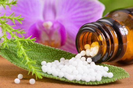 alternative medicine and homeopathic herbal pills Foto de archivo