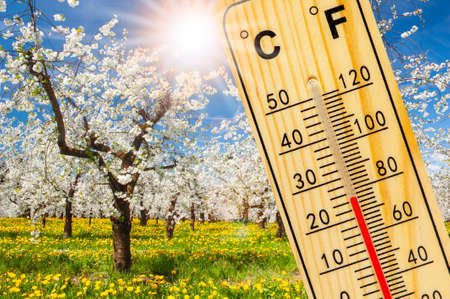 Warm temperature at spring with fine weather and sun Stockfoto
