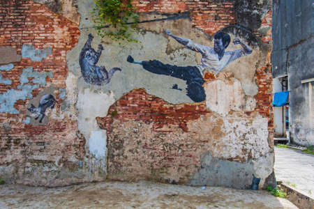 Georgetown, Penang, Malaysia - February 19, 2015: The Real Bruce Lee Would Never Do This street art on wall by Artists for Stray Animals