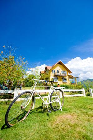 In Love Pai home Reklamní fotografie
