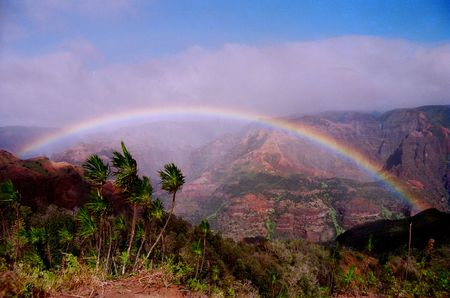 Maui Rainbow at  Waimea Canyon