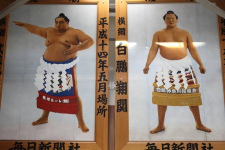 Sumo poster Editorial