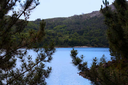 mountain peek: a sneak peek to the river and mountains through the trees