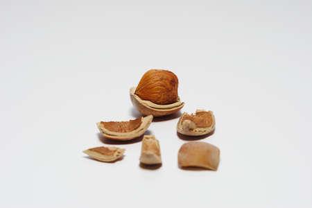 hazel-nut is broken but wonderful on white Stock Photo - 12966866
