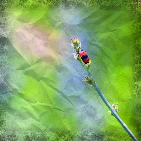 crumpled paper style red beetle on stem in nature on a blurred  photo