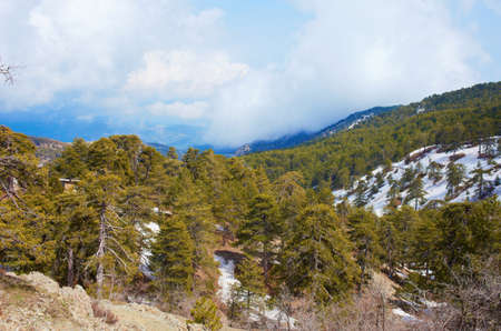 View from mountain Troodos, Cyprus