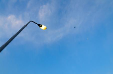 streetlight: Streetlight isolated on blue sky