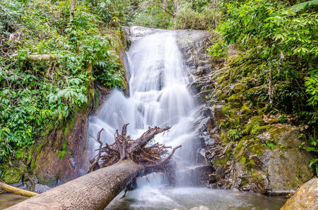 Siriphume Waterfall at Doi Inthanon National Park photo