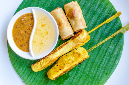 Vegetables spring roll and chicken satay photo