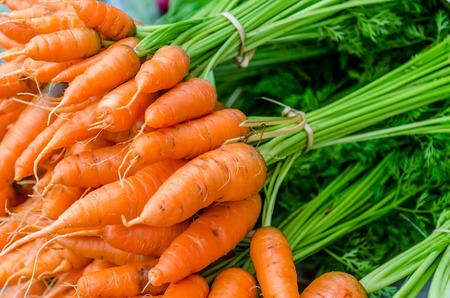 carrot: zanahorias peque�as naranjas apiladas sobre la mesa en el mercado local