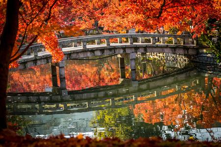 ponte giapponese: Autumn foliage at the stone bridge in Eikando Temple, Kyoto, Japan