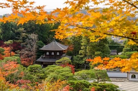 japanese maple tree: Ginkakuji Silver (The Silver Pavilion) in autumn season Editorial