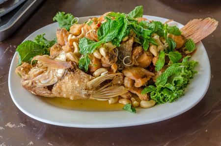 thai herb: Snapper topped with sauce and thai herb Stock Photo