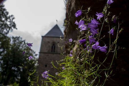 curch: Flower curch Stock Photo