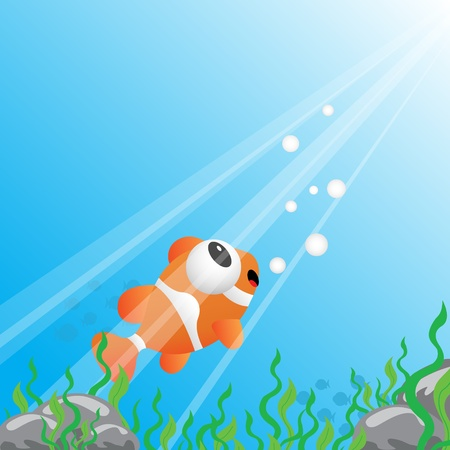 clown fish: Tropical fish under water