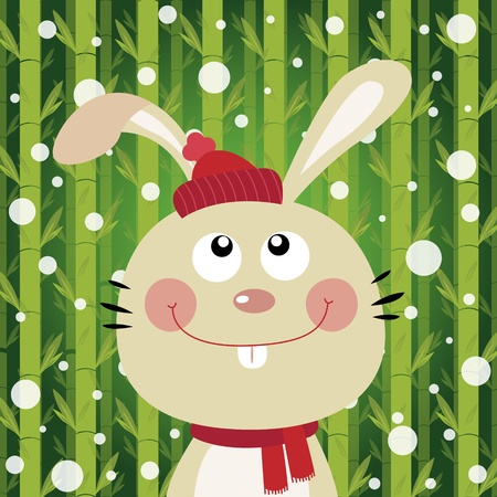 Rabbit and snow on bamboo background