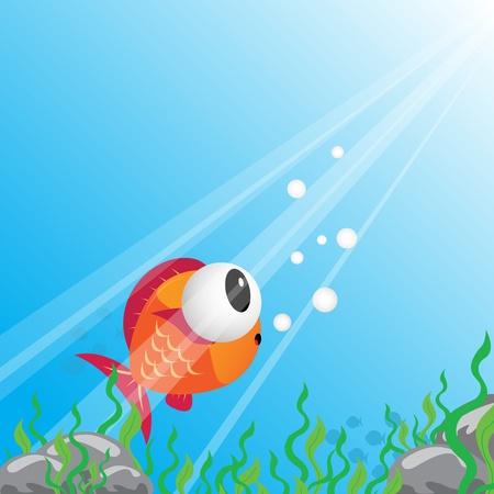 sealife: Tropical fish under water