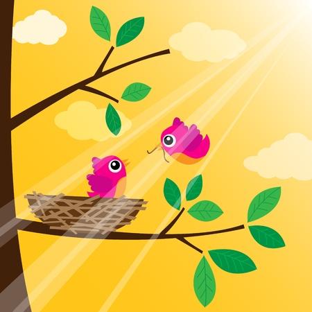 animal feed: Loving bird feeding