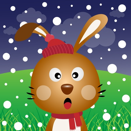 rabbit hole: Brown rabbit with snow in the forest