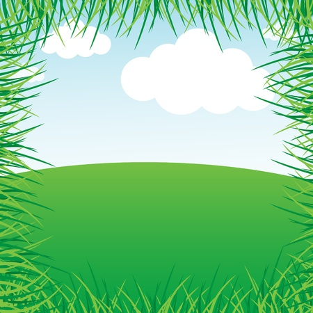 Grassy green field and blue sky Stock Vector - 11877384
