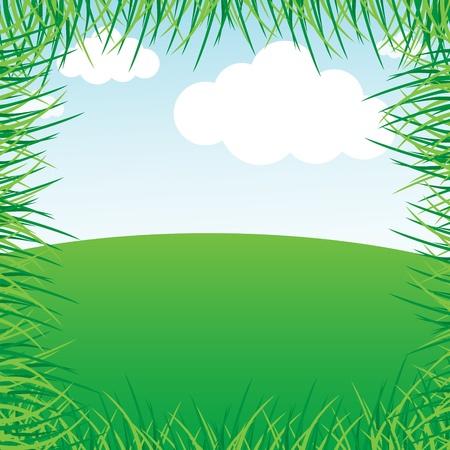 grassy field: Grassy green field and blue sky Illustration