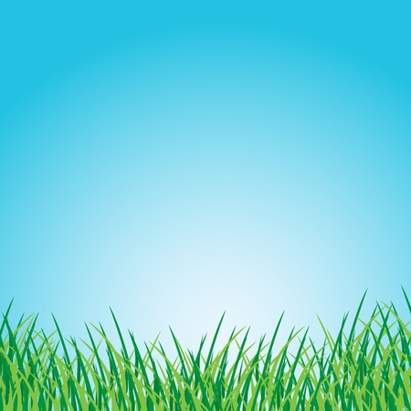 Grassy green field and blue sky Illustration