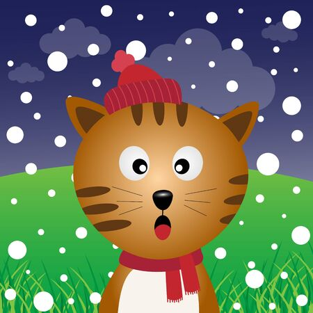 snow field: Cat and snow in the forest