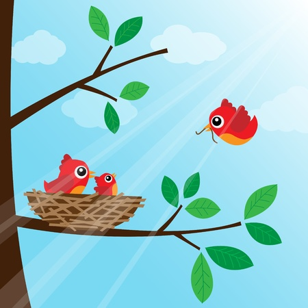 birds nest: Loving bird feeding in the morning Illustration