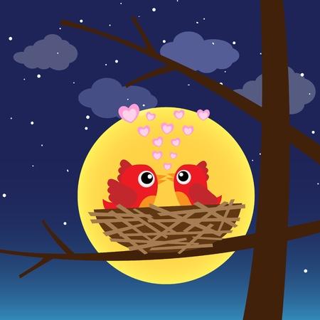 romance love: Birds in love at night
