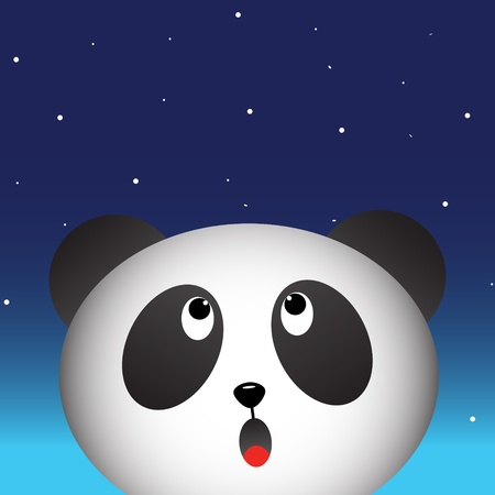 Panda in the night sky