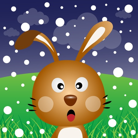 Brown rabbit with snow in the forest Stock Vector - 12816966