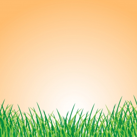 Summer landscape Stock Vector - 17747525