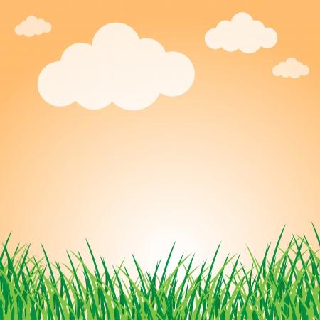 Summer landscape Stock Vector - 18056887