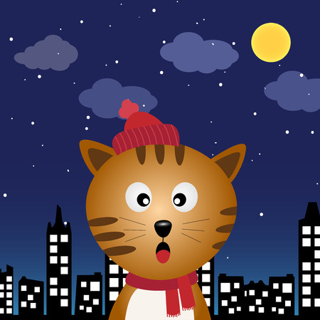 Cat in the city at night