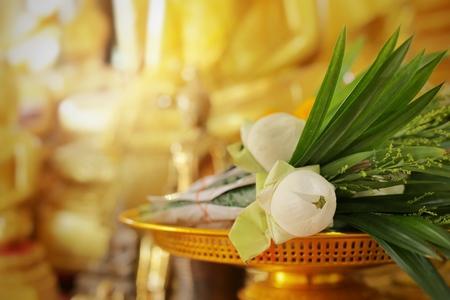 Flores de loto para Buda. Hacer mérito de la cultura tailandesa.