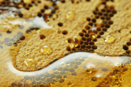 Honeycomb background for advertising. Close up fresh honey on the honeycomb. Background texture and pattern of wax honeycomb from bee. Selective focus and free space for text. Healthy food concept. Stok Fotoğraf